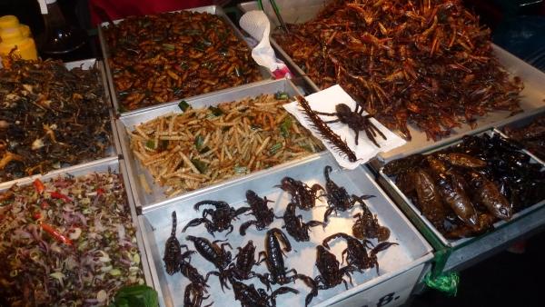 robaki-tajlandia-khao-san