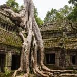 Kambodża, Siem Reap, 2 dni / 1 noc (wyjazd z Bangkoku)