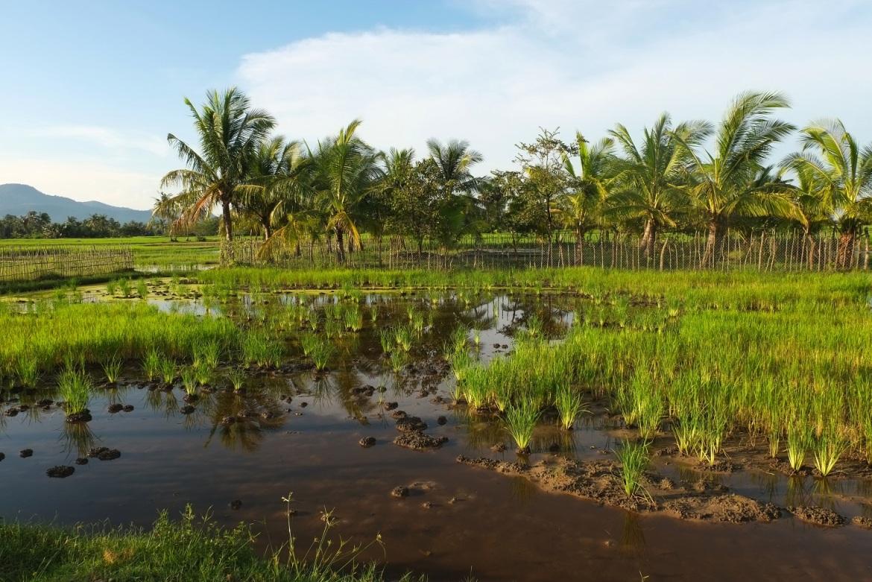Kambodża, prowincja